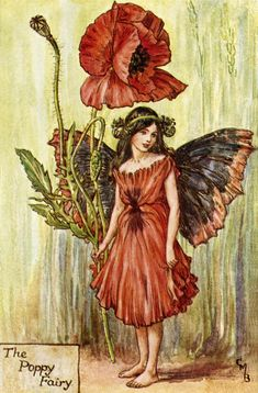 Cicely Mary Barker - The Poppy Fairy