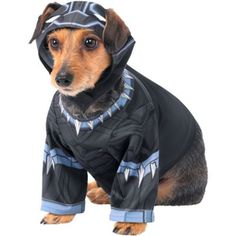 The Black Panther Dog Costume features a shirt with grey and purple prints to resemble Black Panther's costume. Cutouts in the hood allow your pet to wear it comfortably for Halloween. Marvel Costumes, Pet Costumes, Halloween Costumes, Black Panther Costume, Pet Steps, Black Panther Marvel, Training Collar, Pet Paws, Dog Crate