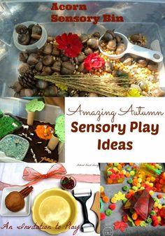 Autumn sensory play ideas.