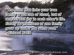 Richard+Bach+Quotes+Argue | The bond that links your true family is not one of blood, but of ...