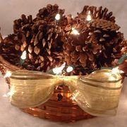 A pinecone basket adds a simple, rustic element to any fireside. However, if you want to make your simple country decor a little more festive for the holidays while adding a lighting option to your hearth, then these lighted pinecone baskets are ideally suited to the job. This home accent takes less than 10 minutes to complete and will set your...