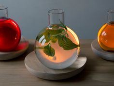 Liquid Light by Kristine Five Melvær. The carafe of water is placed over a candle and acts as a lens to amplify the light. Beautiful.