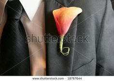 Calla lily wedding boutonniere on suit of groom by Andre Blais, via ShutterStock