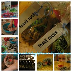 """How to make a Fossil Rock: An inexpensive """"friend-gift"""" your kids can make. Share the excitement of breaking open a rock to find a dinosaur, animal, or a jewel ring! Easy to make in large batches, this would be a great option for a party favor as well."""