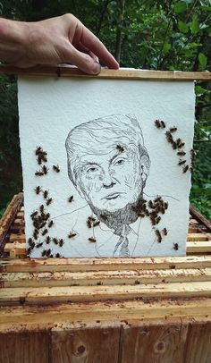 Read my latest art blog about Donald Trump and bees: http://blog.spiritualpaintings.org/2016/08/donald-trump.html