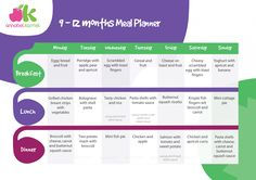 Meal planner for 9-12 months babies