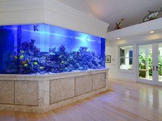 Incredible Aquarium Designs That You Can Try To Make Your Home Look Alive 13 Big Aquarium, Home Aquarium, Aquarium Design, Marine Aquarium, Reef Aquarium, Aquarium Ideas, Big Fish Tanks, Saltwater Fish Tanks, Saltwater Aquarium