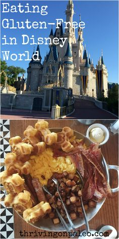 Eating Gluten-Free In Disney World Part 1 by Thriving On Paleo . Find out what restaurants we ate at and successfully navigated (we are Celiac) on a recent visit.