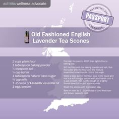 Learn all about lavender essential oil? Included is all there is to know about doTERRA lavender essential oil uses including DIY, food & diffuser recipes Lavender Scones, Lavender Tea, Cooking With Essential Oils, Doterra Essential Oils, Lavender Essential Oil Uses, Lavender Doterra, Doterra Wellness Advocate, Lavender Recipes, Doterra Recipes