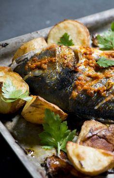 Harissa Roast Sea Bass with Preserved Lemon Potatoes -Bureau of Taste
