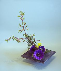 Ikebana Floral Design | SOGETSU IKEBANA FLOWER ARRANGING BY CHRISSIE HARTEN - DESIGN 12