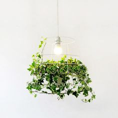 Hanging plant cage pendant light by TudoandCo on #Etsy #greenliving #indoorgardening