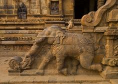Rock Cut Bas Relief On The Stairs Of A Running Elephant At The Airavatesvara Temple, Darasuram, India