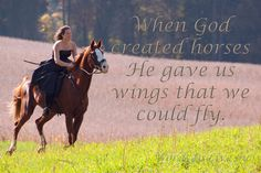 For any one who has ever rode a horse, they are the wings that we borrow from God