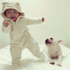 白いイヌと白いクマ♥️ #frenchbulldog #frenchie #dog #daughter #babygirl #フレンチブルドッグ #女の子