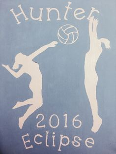 volleyball paint canvas