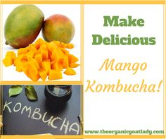 Do you make your own Kombucha? Are you always on the look out for delicious new Kombucha flavors? Mango Kombucha is going to be your new favorite! It is...