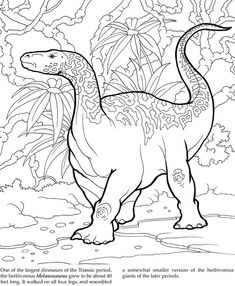 Welcome to Dover Publications Dinosaur Coloring Pages, Truck Coloring Pages, Coloring Sheets, Colouring, Coloring Books, Kids Fun, Cool Kids, Dinasour Party, Dino Drawing