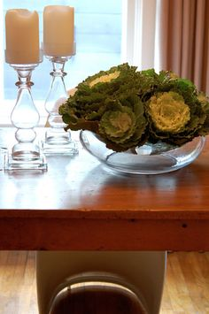 Ornamental Cabbage as fresh flowers! Fall Flowers, Fresh Flowers, Cabbage Flowers, Ornamental Cabbage, Fall Flower Arrangements, Fall Plants, Cabbage Patch, Kale, Serving Bowls