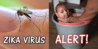 Zika Virus Transmission in Infants and Children