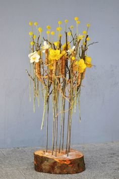 Yellow flowers floating over a tree slice