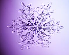 snowflake-3025-Edit