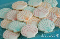Seashell cookie assortment. | Flickr - Photo Sharing!
