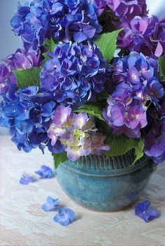 Bouquet of Hydrangeas in turquoise ceramic vase #flower #purple #blue