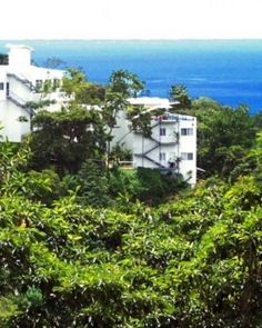 Gaia Hotel And Reserve - Adults Only (Manuel Antonio, Costa Rica) Best Hotel Deals, Best Hotels, Storytelling App, Travel Abroad, Trips Abroad, Hotel Reservations, Vacation Trips, Vacations, Heaven On Earth