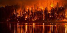 Californian Cannabis Crops Threatened By Massive Wildfire - http://houseofcobraa.com/2016/10/04/45353/