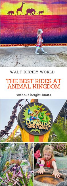 Looking for the Best Rides at Animal Kingdom that every family member can enjoy?These are your best options with low height limits at Walt Disney World! Disney World App, Disney World Secrets, Disney World Hotels, Disney World Magic Kingdom, Disney World Planning, Walt Disney World Vacations, Disney World Tips And Tricks, Disney Trips, Disney Travel