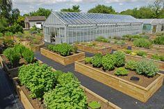 WoodBlocX - Wooden raised planters - Jekka's Herb Farm