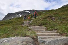 2000 trappetrinn til Hallingskarvet - Tur - UT. Norway, Mountains, Travel, Viajes, Destinations, Traveling, Trips, Bergen