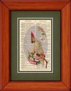Dictionary Print  Cockatoo  6 3/4 x 9 3/4 Vintage by PagesOfAges, $7.00
