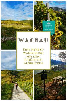 Wachau - Die schönste Weinregion in #Niederösterreich Reisen In Europa, Austria, Mountains, Bergen, My Favorite Things, Places, Nature, Travel Destinations, Hotels