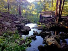 The loop trail leads you to a wooded deck where you can take in the falls and their breathtaking natural glory.