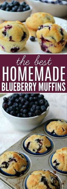 Blueberry Delight Try the best blueberry muffin recipe.This Blueberry Muffin Recipe is so yummy.These easy blueberry muffins are amazing.The best blueberry muffins recipe! Homemade Blueberry Muffins, Blueberry Desserts, Köstliche Desserts, Delicious Desserts, Dessert Recipes, Blueberry Bread, Blueberry Muffin Recipes, Recipes Dinner, Brunch Recipes