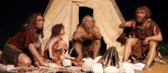 http://www.fr-online.de/wissenschaft/urmenschen-neandertaler-assen-auch-pflanzen,1472788,33999288,view,asFirstTeaser.html