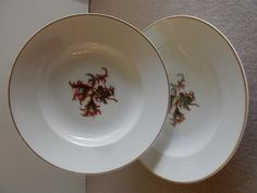 "Set of 2 - 1880's Charles Haviland & Co. Limoges ""Moss Rose"" Pattern Large Rim Soup Bowls"