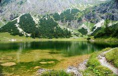산을 닮아 물도 초록색으로~