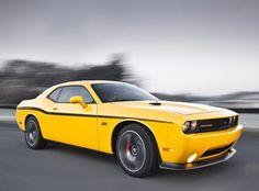 Yellow Jacket Dodge Challenger