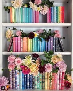 At-home, easy DIY projects to reorganize and redecorate your bookshelves. Bookcases, Book Storage, Storage Ideas, Different Holidays, Shelfie, Books For Teens, Fake Flowers, Rainbow Colors, Colors