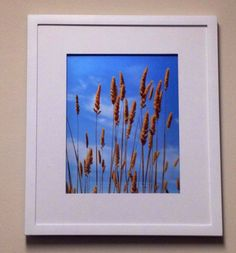 Blue Skies II Framed Photo  on Etsy, $35.00
