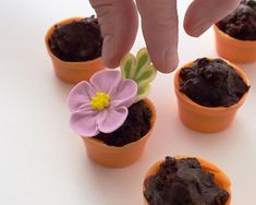 Teeny Tine Flower Pots! Use pre-made royal icing flowers, store bought brownies, and candy melts to make it quick and easy!