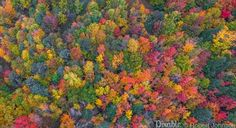 PIXABLE ORIGINAL: Northeast Fall Foliage From A New Perspective - http://www.pixable.com/article/new-england-fall-foliage-photos-and-video-2015/?tracksrc=PIEMBAC20P
