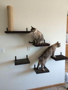 710f01b291c1cd 12 gatto solido ripiano | Etsy Mobilia In Albero, Amaca Per I Giocattoli,  Torri