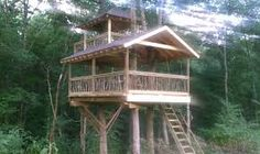 Image result for tree house construction