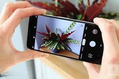 Pixel camera features will be available in your Android phone, this is the way.The Pixel series is considered one of the best smartphone camera devices. Phone Photography, Video Photography, Google Pixel Phone, Phone Wallpapers Tumblr, Good Day Song, Phone Icon, Camera Phone, Digital Trends, Cool Photos