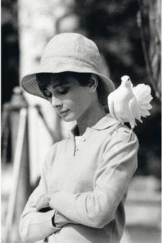 """""""Audrey Hepburn, St Tropez,1967"""" ⓒ Terry O'Neill オードリー・ヘップバーン テリー・オニール"""