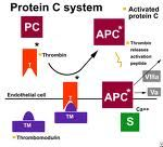 this slide is just to say that Protein C and S deficiency are more rare, and are usually acquired in liver disease, vit K defiency, warfarin, DIC, sepsis, etc. AT-3 also in same boat.  Protein C testing can be clot based or chromogenic- we will do chromogenic since it has less interference.